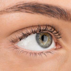 Augenbrauenrasierer Test: Die besten Augenbrauentrimmer [Ultimativer Ratgeber]