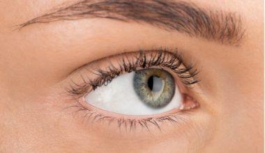 Augenbrauentrimmer Test